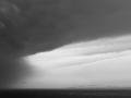 2009 nach dem regen.jpg