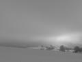 2009 winterlich(t).jpg